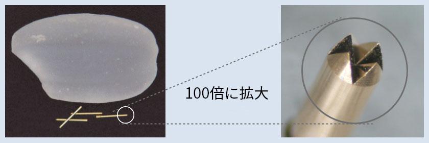 米粒との比較写真(左)と、クラウン加工(右)。